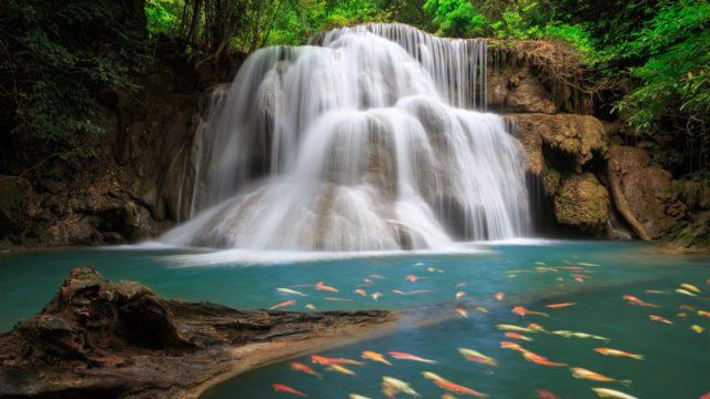 изображение для фотопечати водопад и озеро